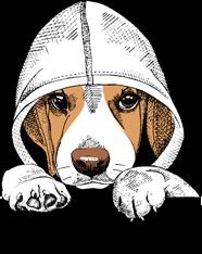 Gary the Beagle
